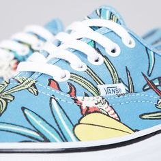 Vans Authentic (Van Doren) Parrot / Light Blue