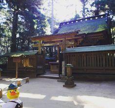 Kashima Jingu shrine (鹿島神宮) one of the oldest shrines in Japan Kashima Ibaraki #rubberduck #rubberduckinjapan #shrine #ibaraki #kashima by enteisao