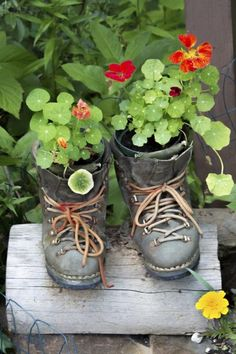 Unbelievable DIY Upcycled Garden Projects For 2019 A password will be e-mailed to you. Unbelievable DIY Upcycled Garden Projects For Unbelievable DIY Upcycled Garden Projects F Balcony Garden, Garden Planters, Amazing Gardens, Beautiful Gardens, What Is Gardening, Organic Gardening, Fleurs Diy, Garden Web, Old Shoes