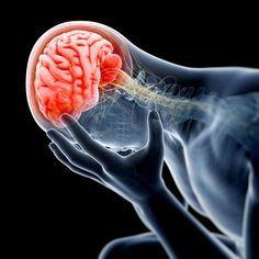 Une étude française publiée dans la dernière édition du British Medical Journal le confirme : la prise régulière de benzodiazépines sur une période supérieure à 3 mois augmente fortement le risque de survenue de la maladie d'Alzheimer. Qu'est-ce que les benzodiazépines ? Les benzodiazépines sont une classe de médicaments psychotropes........DOCUMENT.......