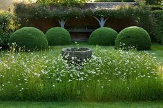 Wollerton Old Hall A formal plantsman's garden with garden 'rooms' each with their own defining style -- Clive Nichols