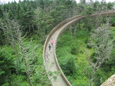 Clingmans Dome Walkway http://www.pantherknobcottages.com