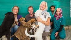 Nowzad Dogs has reunited almost 700 people with their adopted animals in Afghanistan. #CNNHeroes