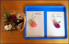 A Jewish Homeschool Blog: Montessori Inspired Activities