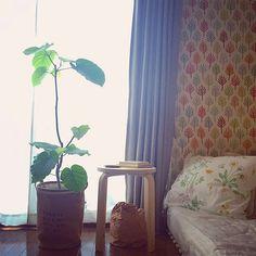 自分の好みで、自由にインテリアをそろえられる一人暮らし。でも、予算や時間の都合もあって、思いどおりにお部屋を作るのは意外に難しいものです。IKEAなら、大きな収納棚からちょっとした雑貨まで、一気にそろえることができますよ。一人暮らしにおすすめのIKEAの商品を、RoomClipで見つけてみました。