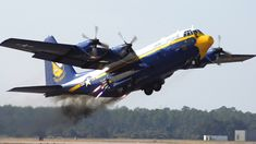C-130 Blue Angels Hercules