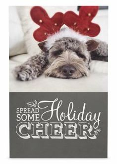 cute dog christmas card | Gift Ideas | Pinterest | Dog, Holidays ...