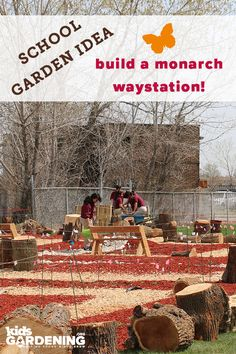 Educators at the Morton Freshman Center designed an entire STEM curriculum around designing and implementing a monarch waystation. Grants For School, Girl Scout Gold Award, Stem Curriculum, Hummingbird Garden, Freshman, Sprays, Girl Scouts, Organic Gardening, Helpful Hints