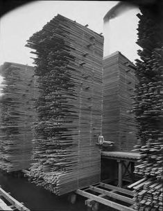 Stacks of lumber drying at the Seattle Cedar Lumber Manufacturing Company's mill in Ballard, ca. 1919. A workman can be seen standing partway up one of the tall stacks of drying lumber. The S…