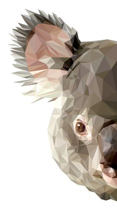 Koalafied by INDYVISUAL design lab. on Behance♥♥ Source by mehmetselimdikm Origami Koala, Art Watercolor, Polygon Art, Australian Animals, Animal Faces, Animal Wallpaper, Geometric Art, Cat Art, Art Drawings