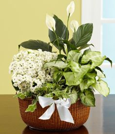 proflowers change delivery address