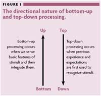 Classroom Applications of top-Down and Bottom-Up Processing. Lovrich, D. (2006)