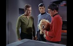 Star Trek TOS1 Episode 5 'The Enemy Within', wherein Kirk is split into 'good kirk' and 'evil kirk' by a transporter accident. The unicorndog is used to demonstrate the transporter accident by being split into a well behaved but timid dog and a mean bitey dog.
