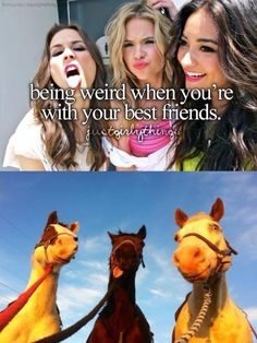 1. this has PLL in it 2. It has horses in it  LOVE IT HAHA