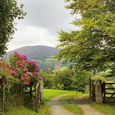 Lane to Rose Cottage.