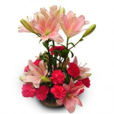 Bouquet is an absolutely lovely way to send your love and affection across the miles. send this Lillie`s W/h Carnations $20.24