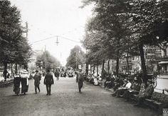 Max Missmann, Berlin, Mittelpromenade Unter den Linden, 1911.
