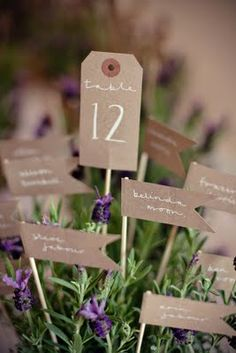 Table markers. The tiny ones have individuals and couples' names on them.