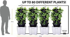 4 Tower Garden System (recirculating) (Black) -- V Indoor Garden, Garden Pots, Container Gardening, Gardening Tips, Tower Garden, Amazing Gardens, Planters, Herbs, Image Link