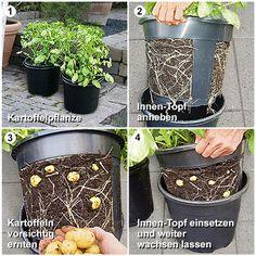 Kartoffel-Pflanztopf PotatoPot(R) - Pflanz-Kartoffeln von Gärtner Pötschke