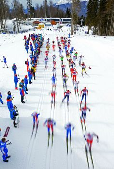 Cross-Country Skiing - Winter Olympics Day 2 - Skiers compete in the Men's Skiathlon 15 km Classic + 15 km Free during day two of the Sochi 2014 Winter Olympics at Laura Cross-country Ski & Biathlon Center on February 9, 2014 in Sochi, Russia. (Photo by Richard Heathcote/Getty Images)