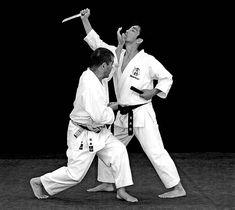 Shōtei age zuki Martial Arts, Age, Combat Sport, Martial Art