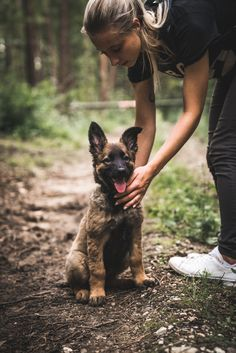 Belgian Malinois Training, Belgian Malinois Puppies, Dog Photos, Dog Pictures, Cute Puppies, Dogs And Puppies, Belgium Malinois, Secret Life Of Pets, Schaefer