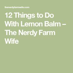 12 Things to Do With Lemon Balm – The Nerdy Farm Wife