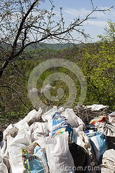 BREAZA, ROMANIA - APRIL, 16, 2016: Sacks filled with garbage against nature. Image taken after a group of volunteers clean out the garbage thrown in nature