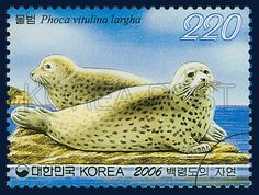 Nature of Baengnyeongdo, true seal, marine life, blue, yellow, 2006 1 18, 백령도의 자연, 2006년 1월 18일, 2474, 물범, postage 우표