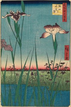 Japanese Woodblock - Irises