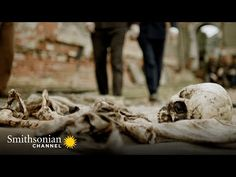The Blitz, Forensic Science, Forensics, The Victim, Luftwaffe, Channel, London, History, Medicine
