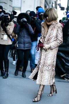 Le manteau léopard d'Anna Wintour à la Fashion Week automne-hiver 2016-2017 de New York - February 15, 2016
