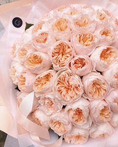 "Flower shop in Prague on Instagram: ""David Austin ""Juliet"" as a masterpiece 🧡💗💛"" Garden Rose Bouquet, Garden Roses, Juliet Garden Rose, Juliet Roses, Buy Flowers Online, Types Of Roses, Growing Roses, David Austin, Rose Bush"