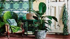 moss-green-armchair-ACS1016p54
