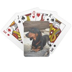 Yoga dog playing cards - dog puppy dogs doggy pup hound love pet best friend