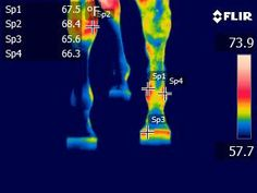 Image by Pinpoint Thermography, LLC