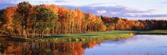 Fall Golf Course New England Photographic Print at AllPosters.com
