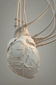 Anatomical Heart, Human Heart, Anatomy Art, Mechanical Design, Ghost In The Shell, Heart Art, Star Wars Art, Oeuvre D'art, Illustration