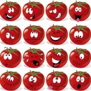 funny tomato face expressions icons vector free