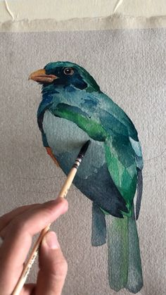 Painting bird 🐦 - Birds by Polina Bright - Watercolor Watercolor Video, Watercolour Tutorials, Watercolor Bird, Watercolor Techniques, Art Techniques, Watercolour Painting, Painting & Drawing, Love Birds Painting, Bird Paintings