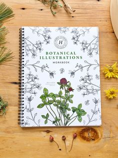 The Botanical Illustrations Workbook – Herbal Monographs and Herb Coloring Book