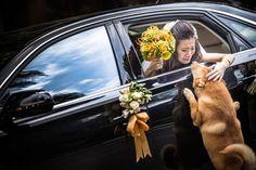 mujer vestida de novia adentro de un carro con la ventana abajo acariciando a un perro