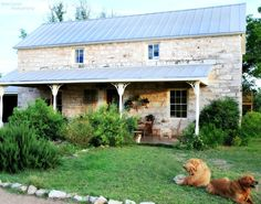 Fiona and Twig: Ahh, looks like TX hill country with the white stone and aluminum roofing