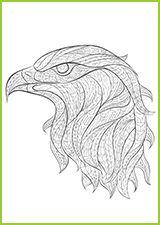 tatouage un aigle