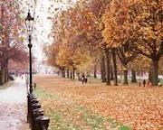 Hyde Park - London