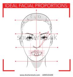 Face chart make up.Ideal Facial Proportions.Beauty.How to make a beautiful woman with makeup