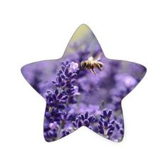 Spring Lavender with Bees Purple Floral Star Sticker - spring gifts beautiful diy spring time new year