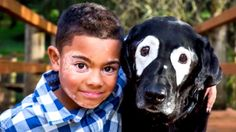 An 8-year-old boy with a skin disorder that causes white patches on his skin was able to fly across the country to meet a dog with the same condition. Both the boy, Carter Blanchard, of Searcy, Arkansas, and the dog, Rowdy, 13, who lives with his owners in Oregon, have vitiligo, a disorder with no known cause in which the cells that make pigment in the skin are destroyed, according to the National Institutes of Health. Carter when diagnosed with the disorder in December 2014 when he was in…