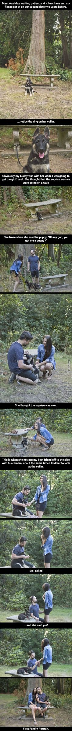 And that is the way you do it fellas! Getting a puppy and a husband in one day? Ummm, yes please! Adorable!!!!